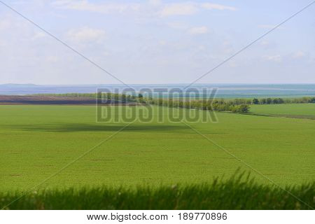 Big green field from high point of view with blue sky in sunny summer day. Big shadow of cloud on the ground. Concept of health product and fresh air. Agricultural place for grow up