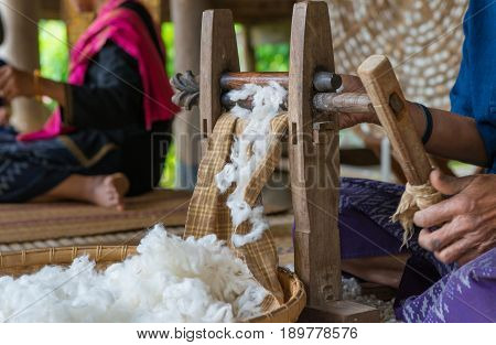 Silkworms nest in white dish and use for silk fabric.