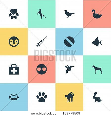 Vector Illustration Set Of Simple Zoo Icons. Elements Watchdog, Hippodrome, Lake Bird And Other Synonyms Hare, Security And Bannerfish.