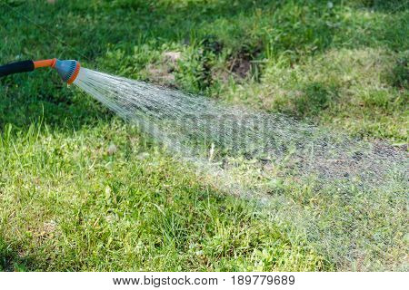 To Water A Lawn. To Water A Grass On A Lawn. The Girl Waters A Lawn.