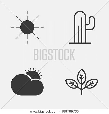 World Icons Set. Collection Of Cactus, Sprout, Sunny Weather And Other Elements. Also Includes Symbols Such As Desert, Sprout, Cactus.
