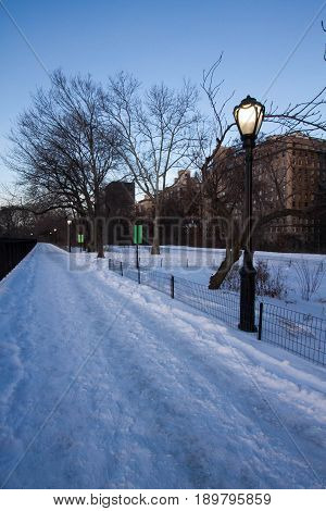 Snow pathway at park with light pole and trees