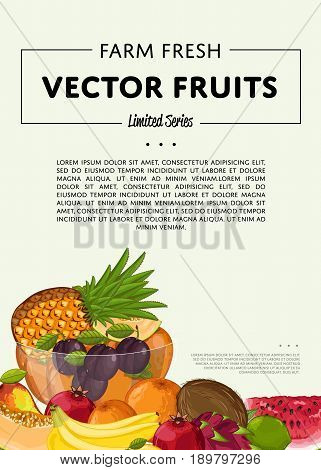 Fresh organic fruit poster vector illustration. Natural product, juicy fruit, vegetarian delicious nutrition, organic healthy food. Watermelon, plum, banana, pomegranate, lime, coconut, apple, orange