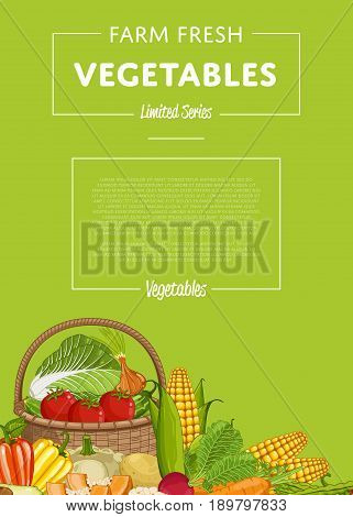 Fresh farm food banner vector illustration. Natural vegetable, organic farming retail, vegan product store poster. Healthy farm food advertising with corn, pepper, radish, carrot, tomato, cabbage