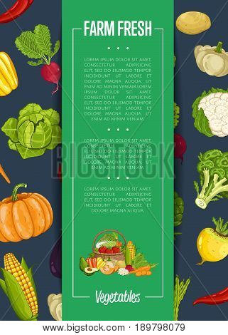 Fresh farm food banner vector illustration. Natural vegetable, organic farming retail, vegan product store poster. Healthy farm food advertising with corn, pepper, radish, broccoli, pumpkin, cabbage