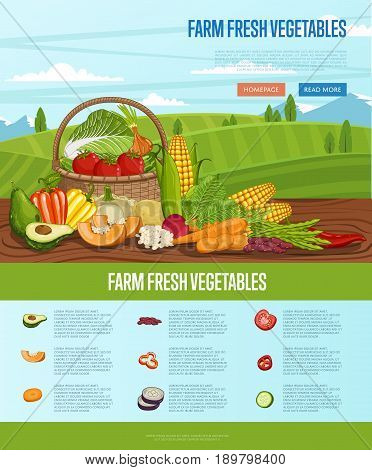 Farm fresh vegetable banner with rural landscape vector illustration. Natural growing, agriculture farming, vegan product poster. Tomato, onion, cabbage, pepper, corn, onion in basket on wooden table