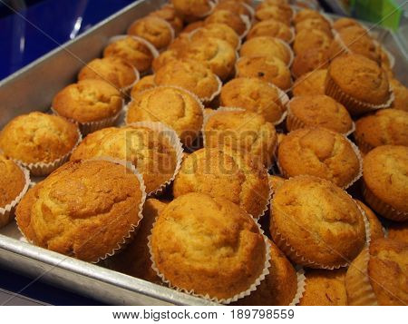 rows of cup cakes in on shelf in bakery or baker's shop