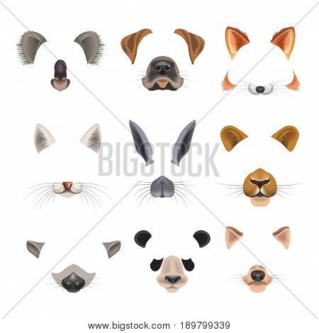 Animal faces templates for video chat effects or selfie filters set. Vector flat isolated funny icons muzzle nose and ear of koala or panda, dog, fox or cat and rabbit or raccoon and lion panther