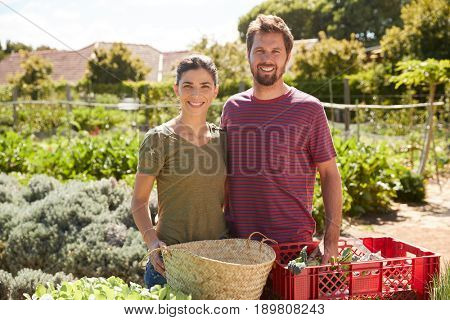 Portrait Of Couple Working On Community Allotment Together