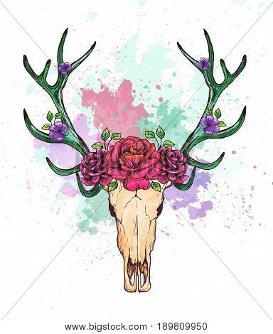 Skull of a deer and horns decorated with flowers, vector illustration. bohemian watercolor hipster design print. Bohemian deer print, deer watercolor.