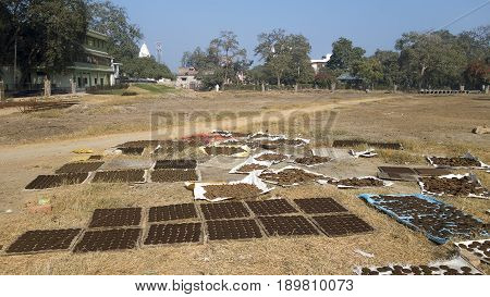 Drying of Ayurvedic semifinished products containing cow manure. One of the stages of the production of a medical company operating in the ancient Ayurvedic medicine in the sacred Indian city of Vrindavan