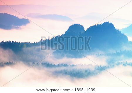Colorful Daybreak In A Beautiful Hilly Landscape. Peaks Of Hills Are Sticking Out From Fog. The Fog