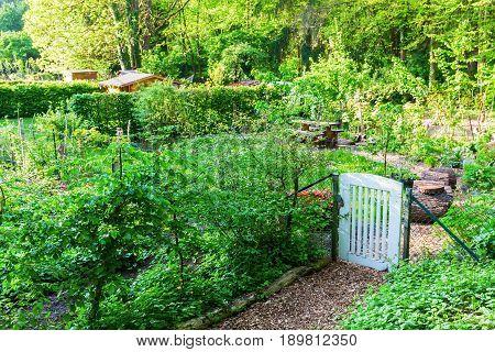 Allotment Garden In Bedburg Alt-kaster, Germany