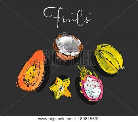 Hand drawn vector graphic abstract artistic exotic fruits illustrations collection set with coconut, papaya, dragon fruit and carambola isolated on black background
