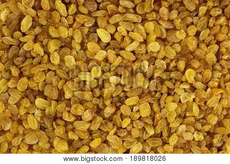 Raisin texture. Raisin background tasty natural by type