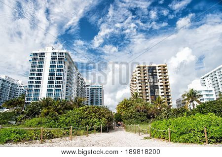 Miami beach or south beach. path way from tropical beach with green palm trees to high rise apartment buildings or houses. City skyline with clouds on sunny day on blue sky. Idyllic summer vacation