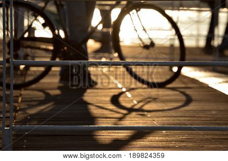 Bicycle backlight silhouette on Genoa dock Italy