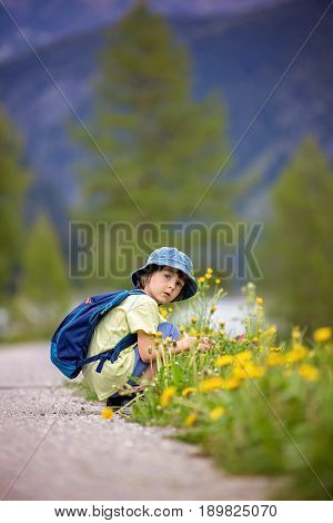 Cute Child, Boy, Walking On A Little Path In Swiss Alps
