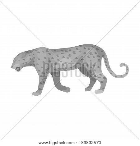 Leopard.African safari single icon in monochrome style vector symbol stock illustration .
