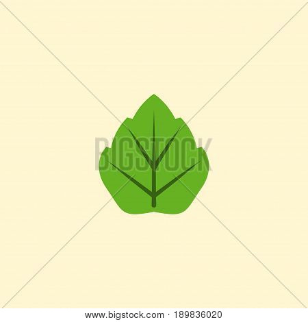 Flat Leaf Element. Vector Illustration Of Flat Foliage Isolated On Clean Background. Can Be Used As Leaf, Foliage And Tree Symbols.