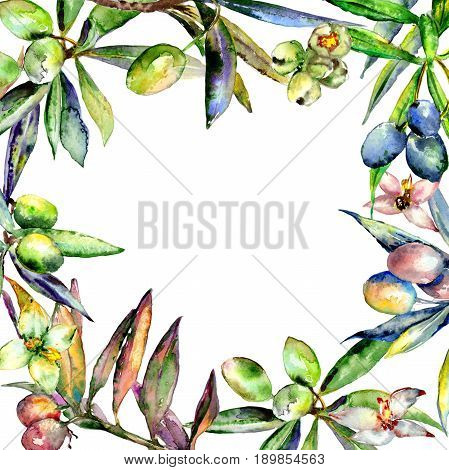 Olive tree frame in a watercolor style isolated. Full name of the plant: Branches of an olive tree. Aquarelle olive tree for background, texture, wrapper pattern, frame or border