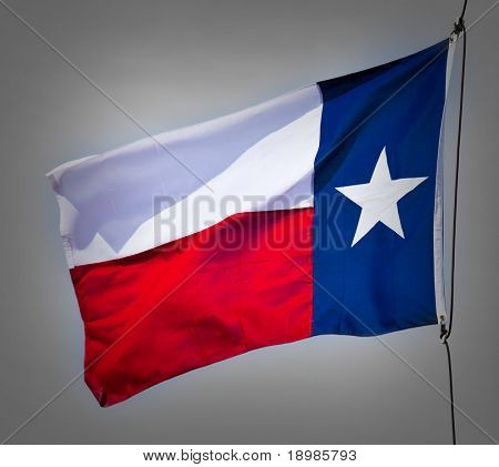 A new Texas flag flapping in the wind.
