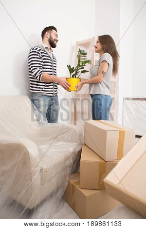 Moving in, happy male and female unpacking boxes, holding plant. Brunette man and woman relocating to new apartment, unpacking boxes.