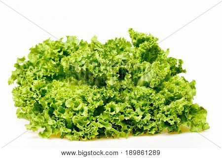 Lettuce Leaf Or Green Leafy Vegetables Isolated On White
