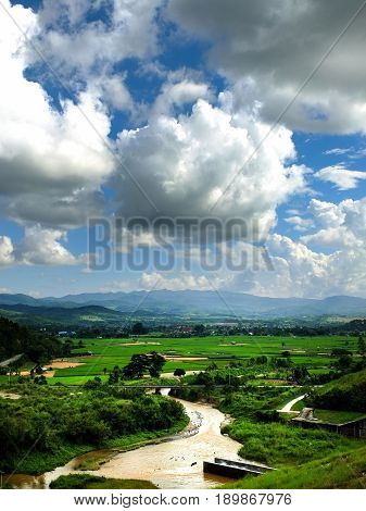 field green grass landscape. beautiful view on nature with green forest in mountains. High angle