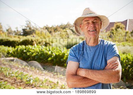 Portrait Of Mature Man Standing On Allotment