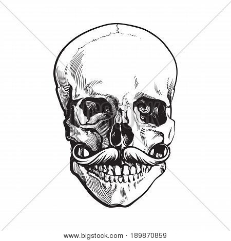 Hand drawn human skull with curled upward hipster moustache, black and white sketch style vector illustration isolated on white background. Realistic front view hand drawing of human skull