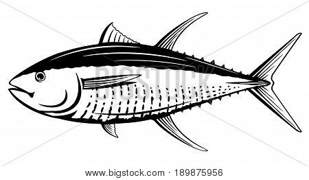 Yellowfin tuna from one side in black and white color, isolated