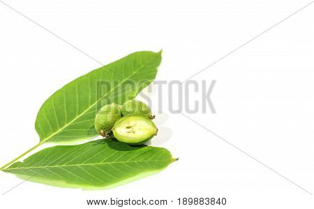 One green walnut cut and recumbent on two whole walnuts with two leaves on white background