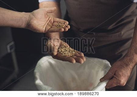 Partial view of male brewery workers inspecting bag with grains