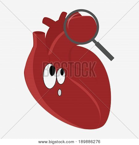 Human Heart With Magnifying Glass