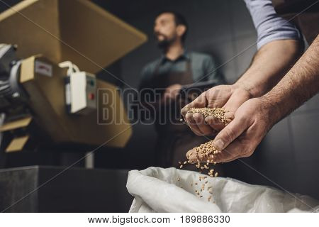 Brewery Worker Inspecting Grains