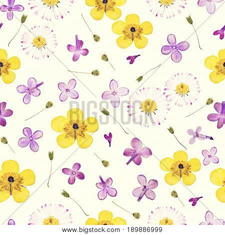 Pressed summer spring violet yellow flowers isolated on cream yellow background pattern. For use in scrapbooking floristry or herbarium.