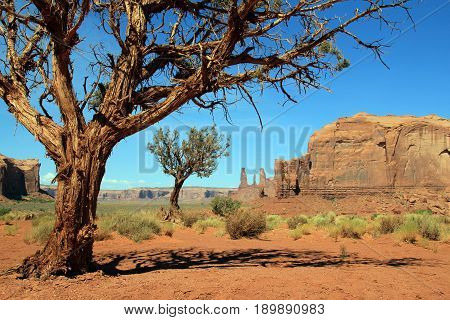 View from Monument Valley Navajo Tribal Park. Utah United States