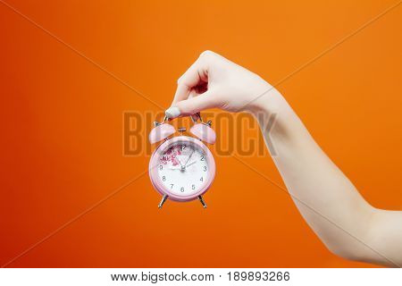 Female Hand is Holding a Little Pink Clock on Orange Background in Studio. Time Concept.