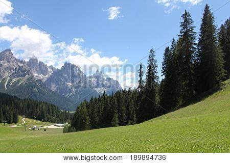 Trentino panorama from a green meadow and the summits of the Dolomites