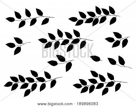 set of black tree branches with leaves silhouette on white background