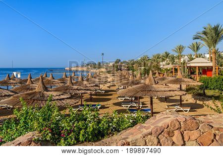 Sunny beach with beautiful flowers and umbrella at Red sea Egypt in summer hot