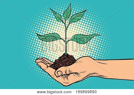 green sprout in hand. Horticulture and agriculture. Ecology and environmental protection. Pop art retro vector illustration