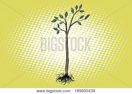 tree seedling with green leaves. Nature ecology. Pop art retro vector illustration