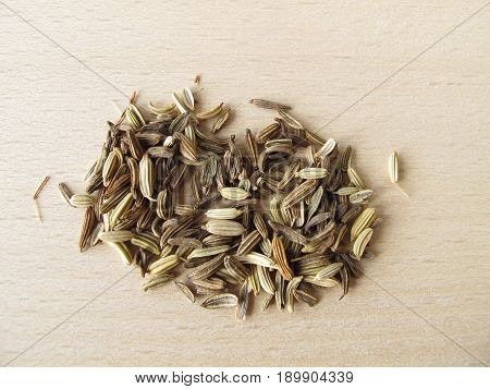 Fennel seeds in bowl, Foeniculi, for herbal medicine