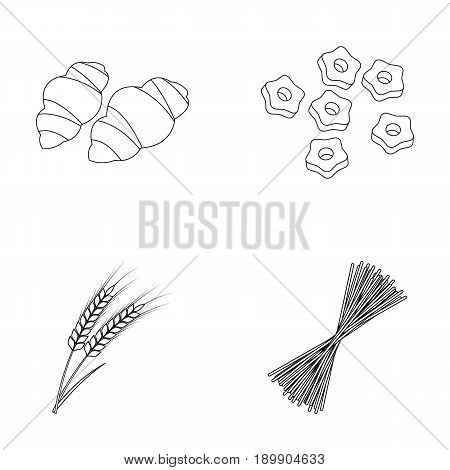 Different types of pasta. Types of pasta set collection icons in outline style vector symbol stock illustration .