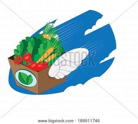 a vector cartoon representing a winged carton package full of fresh vegetables and fruit flying and landing - online order and very fast shipping concept