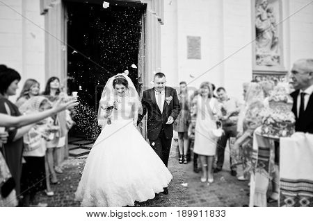 Happy Wedding Couple Walking Under Colored Rice Which Is Thrown Away Guests. Black And White Photo.
