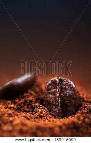 Arabica Coffee beans macro on a brown background close up macro