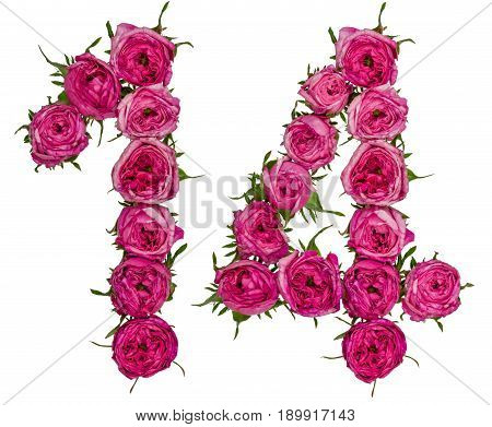 Arabic Numeral 14, Fourteen, From Red Flowers Of Rose, Isolated On White Background